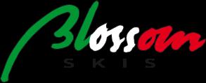 Image result for blossom ski logo
